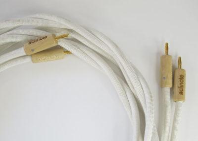 Câbles HP Aria Evo Actinote
