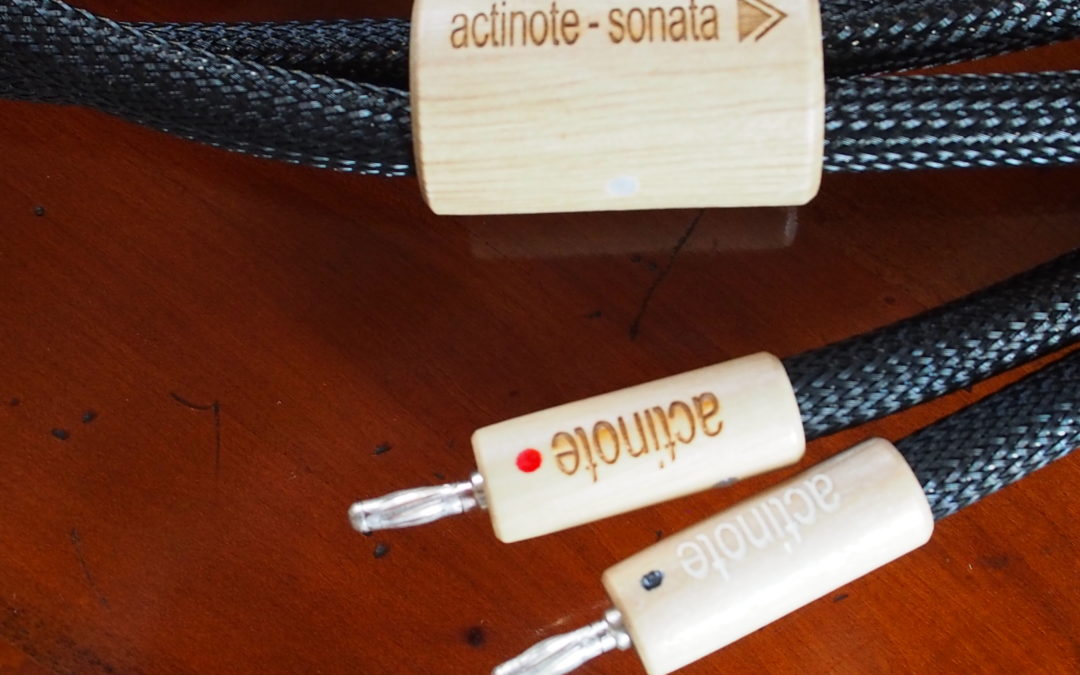 Câbles HP Sonata Evo Actinote